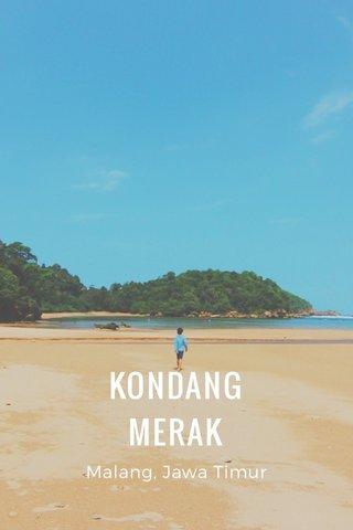 KONDANG MERAK Malang, Jawa Timur