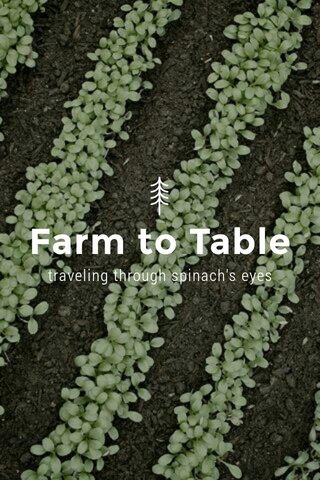 Farm to Table traveling through spinach's eyes