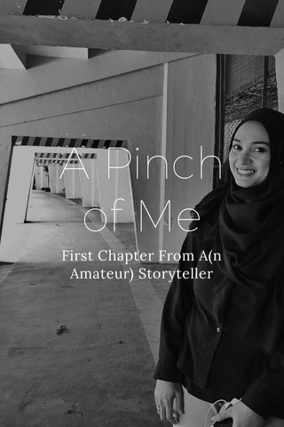 A Pinch of Me First Chapter From A(n Amateur) Storyteller