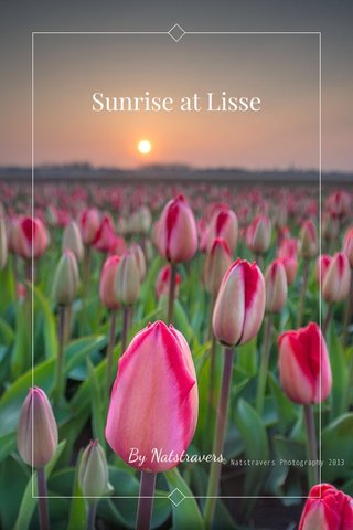 Sunrise at Lisse By Natstravers