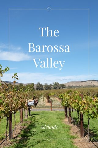 The Barossa Valley Adelaide