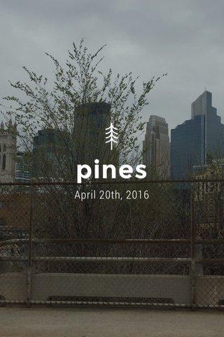 pines April 20th, 2016