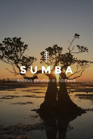 SUMBA Another paradise in Indonesia