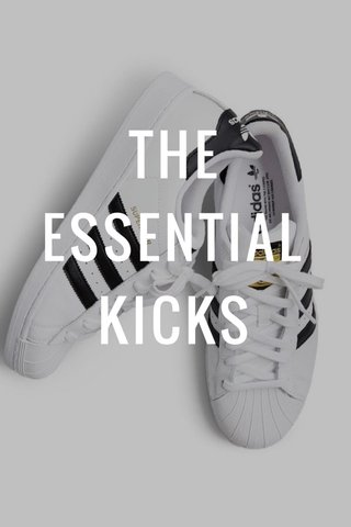 THE ESSENTIAL KICKS