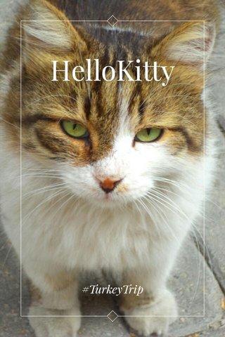 HelloKitty #TurkeyTrip