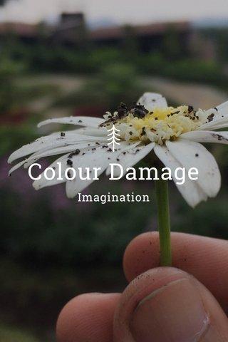 Colour Damage Imagination