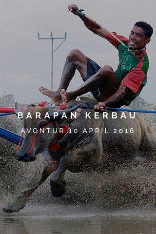 BARAPAN KERBAU AVONTUR 10 APRIL 2016