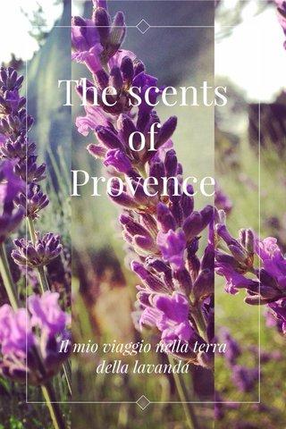 The scents of Provence Il mio viaggio nella terra della lavanda