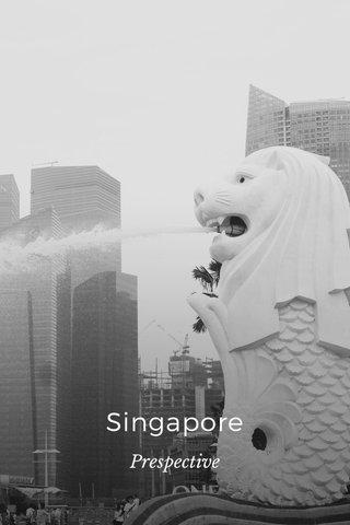 Singapore Prespective