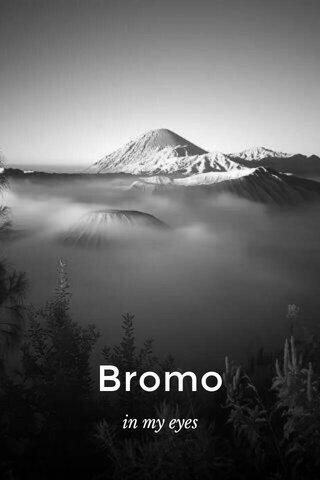 Bromo in my eyes