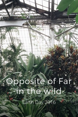 Opposite of Far -in the wild- Earth Day 2016