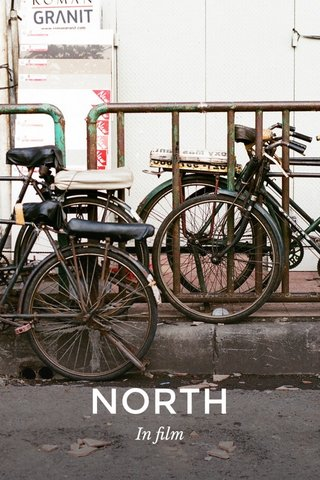 NORTH In film