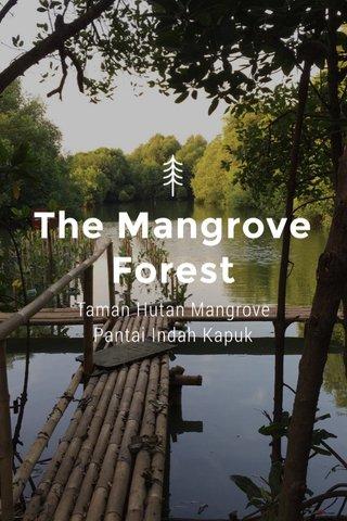 The Mangrove Forest Taman Hutan Mangrove Pantai Indah Kapuk