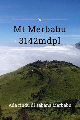 Mt Merbabu 3142mdpl Ada rindu di sabana Merbabu
