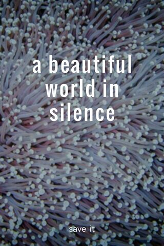 a beautiful world in silence save it