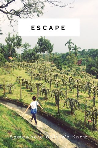 ESCAPE Somewhere Only We Know