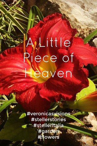 A Little Piece of Heaven #veronicasvisions #stellerstories #stelleritalia #garden #flowers