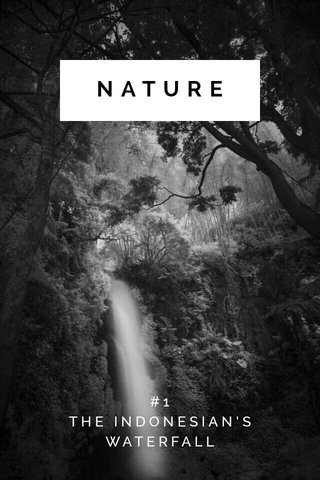 NATURE #1 THE INDONESIAN'S WATERFALL