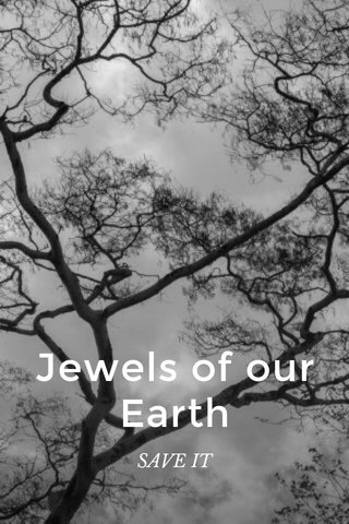 Jewels of our Earth SAVE IT