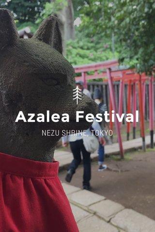 Azalea Festival NEZU SHRINE, TOKYO