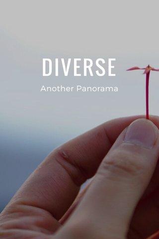 DIVERSE Another Panorama