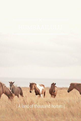 HUMBAAILULU | A land of thousand horses |