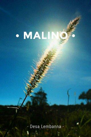 • MALINO • - Desa Lembanna -