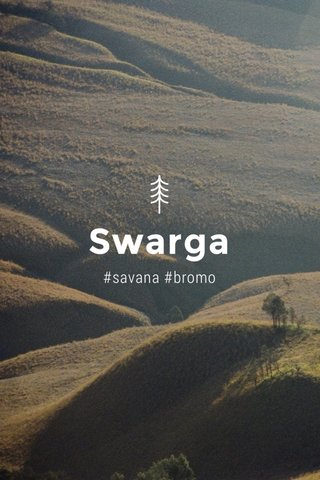 Swarga #savana #bromo