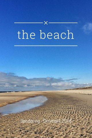 the beach Søndervig - Denmark 2016