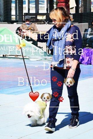 Sfilata Mad For Pet Italia - DF Bilbo 🐾🐶❤️🐶🐾