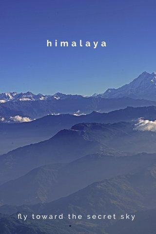 himalaya fly toward the secret sky