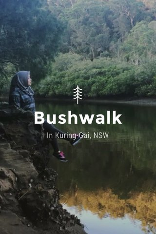 Bushwalk In Kuring-Gai, NSW