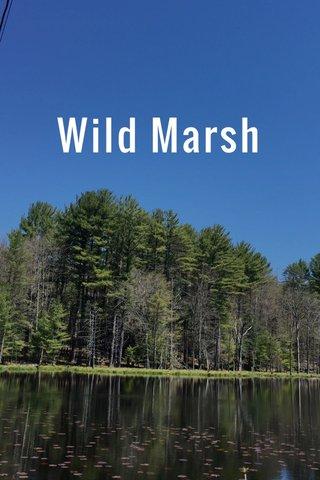 Wild Marsh