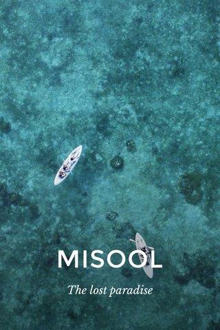 MISOOL The lost paradise