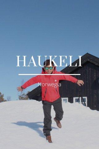 HAUKELI Norwegia