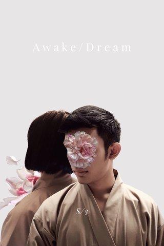 Awake/Dream S/3