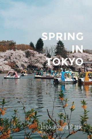 SPRING IN TOKYO Inokashira Park.