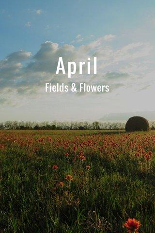 April Fields & Flowers