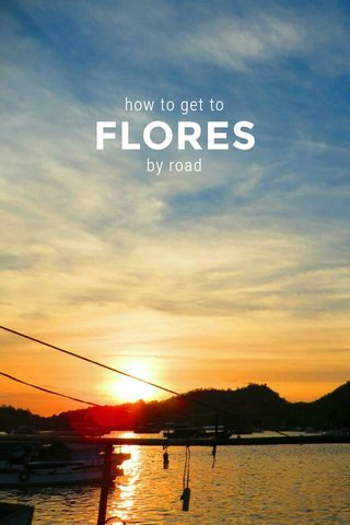 FLORES how to get to by road