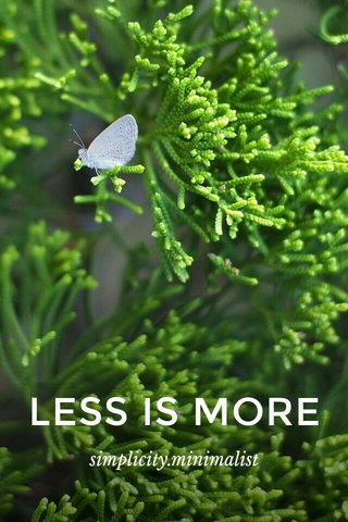 LESS IS MORE simplicity.minimalist