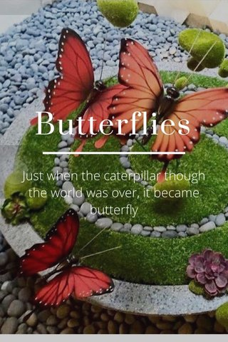 Butterflies Just when the caterpillar though the world was over, it became butterfly