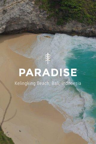 PARADISE Kelingking Beach, Bali, Indonesia