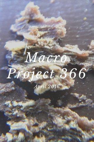 Macro Project 366 April 2016