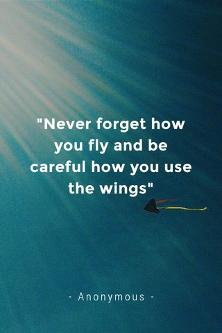 """""""Never forget how you fly and be careful how you use the wings"""" - Anonymous -"""