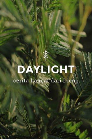 DAYLIGHT cerita hangat dari Dieng