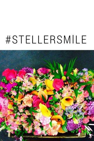 #STELLERSMlLE