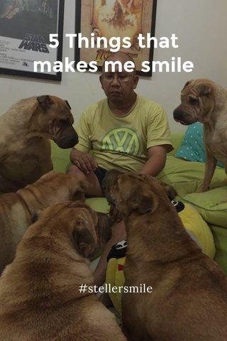 5 Things that makes me smile #stellersmile