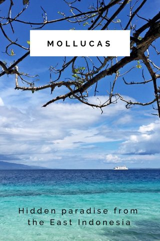 MOLLUCAS Hidden paradise from the East Indonesia