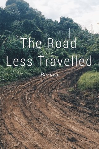 The Road Less Travelled Borneo