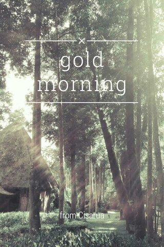 gold morning from Cisarua